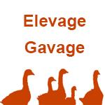 logo-elevage-gavage