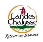 logo-landes-chalosse